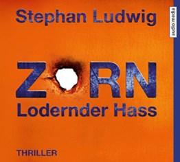 Zorn 7 – Lodernder Hass - 1