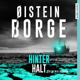Hinterhalt als Hörbuch Download von Øistein Borge